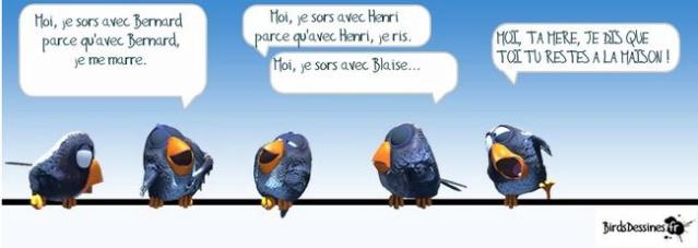 Les birds - Page 18 10408810