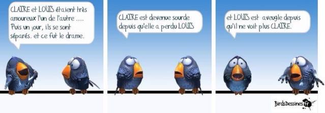 Les birds - Page 18 10426610