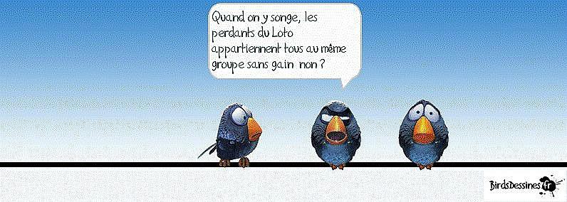 Les birds - Page 10 10712810