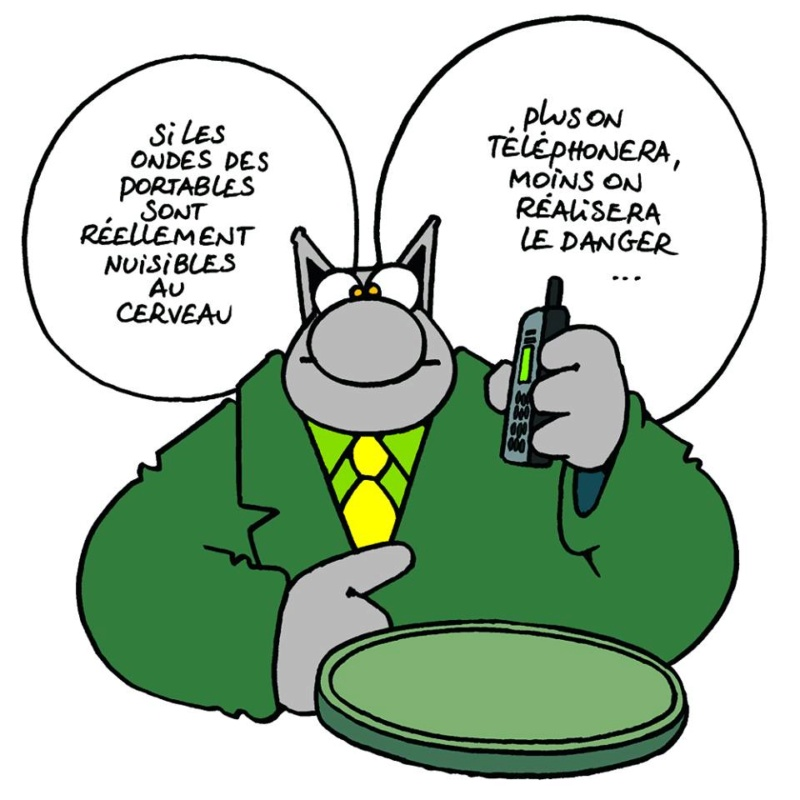 Le Chat - Page 3 11203010