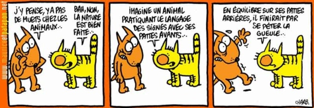 Maurice et Patapon - Page 29 11603917