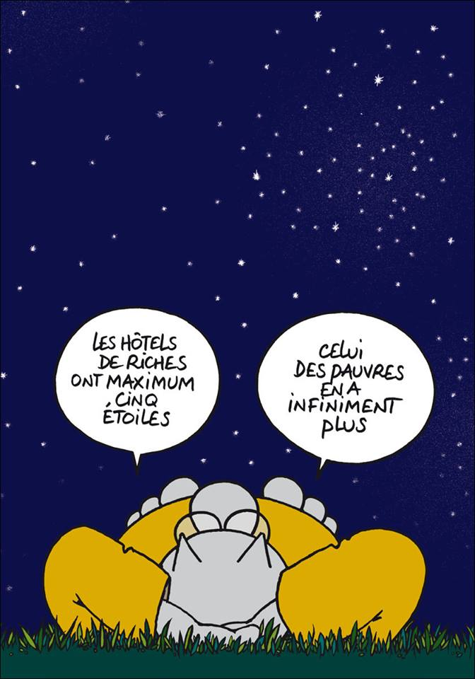 Le chat - Page 5 11836910