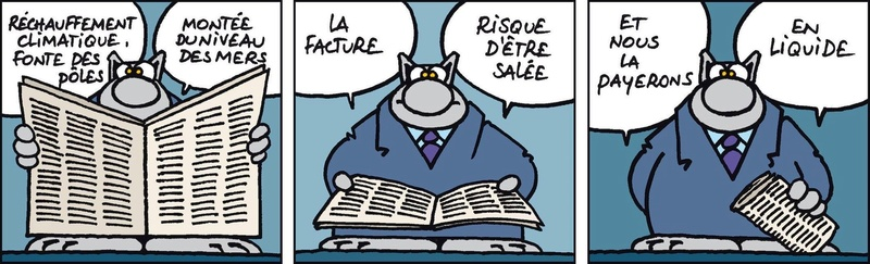 Le chat - Page 6 12314510