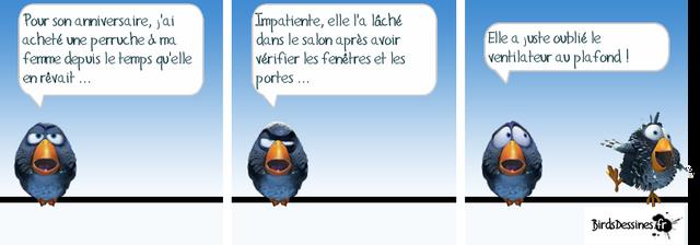 Les Birds - Page 3 13777710