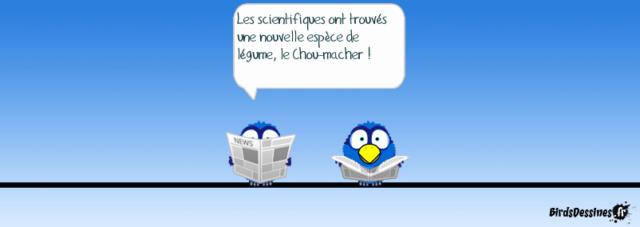 Les birds - Page 16 13891710