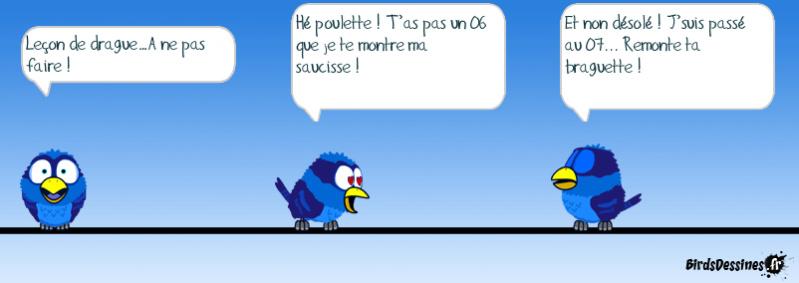 Les Birds - Page 3 14320310
