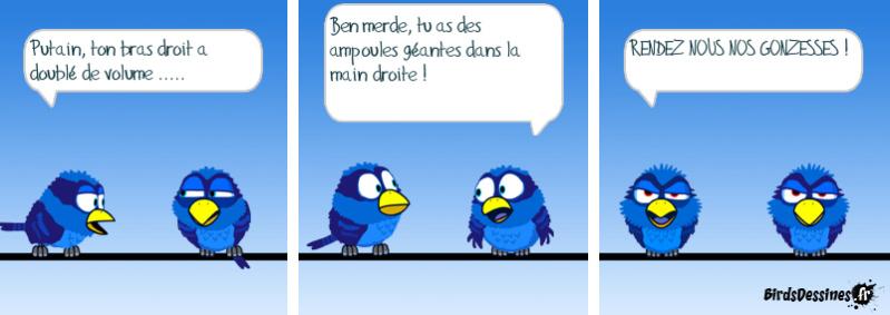 Les Birds - Page 3 14365610