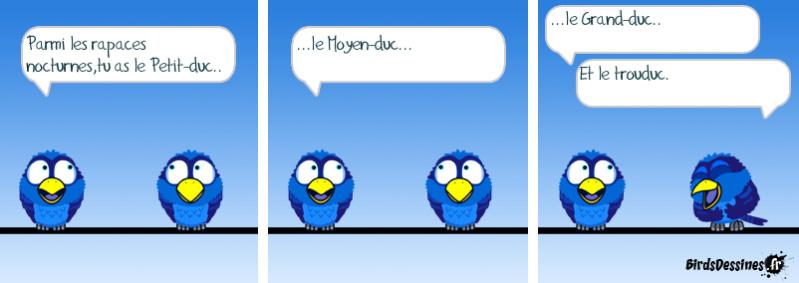 Les Birds - Page 4 14508510
