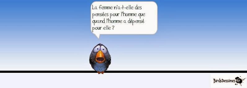 Les birds - Page 10 16544810