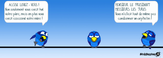 Les birds - Page 16 16897910