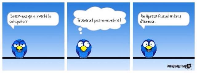 Les birds - Page 18 18274810
