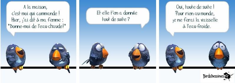 Les Birds - Page 4 20591510