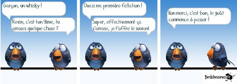 Les Birds - Page 4 21606910