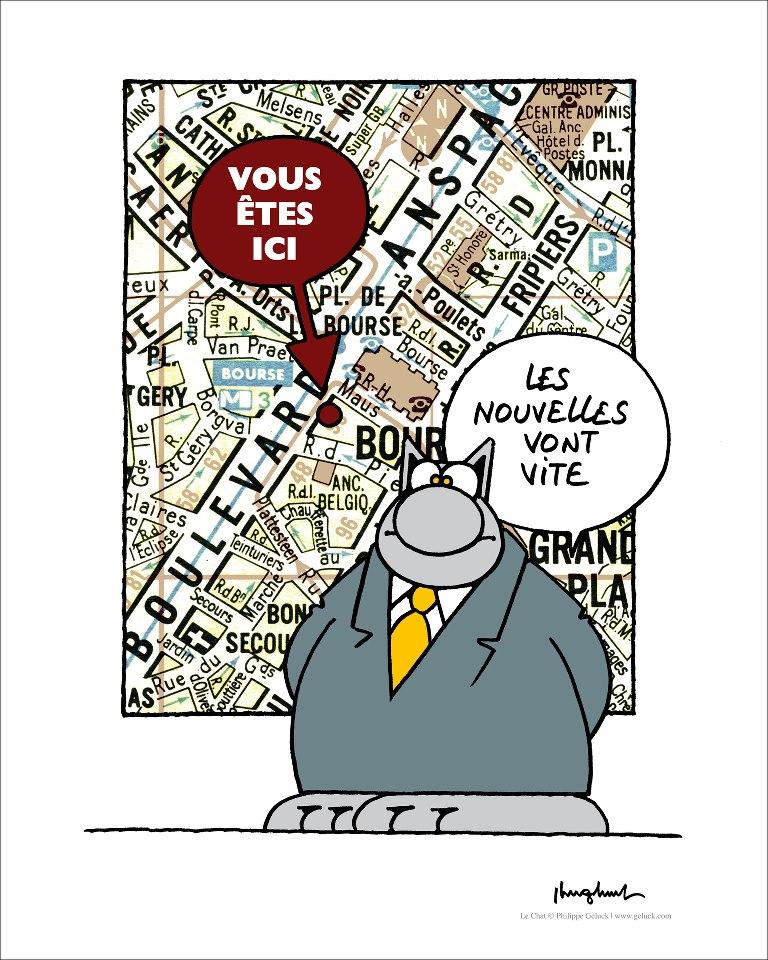 Le chat - Page 3 22182811