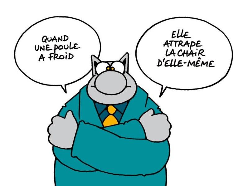 Le chat - Page 13 28167111