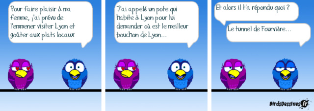 Les birds - Page 21 29695510