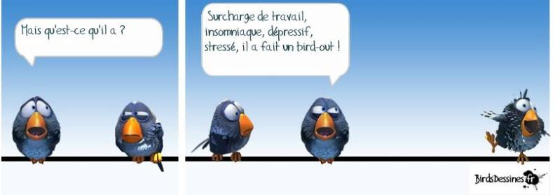 Les Birds - Page 4 29716810