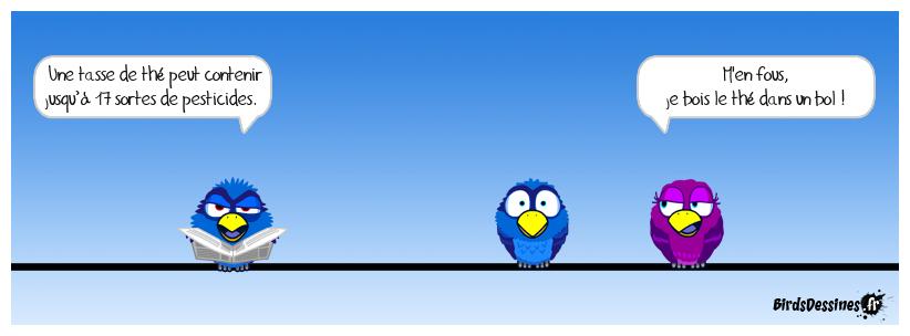 Les birds - Page 21 30124310