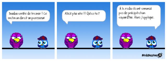 Les birds - Page 21 30221810