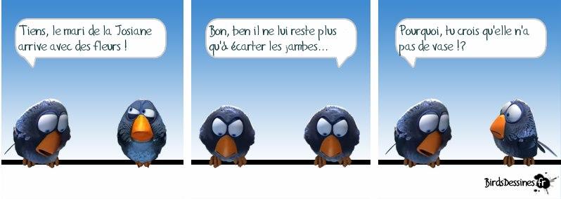 Les Birds - Page 5 30497710