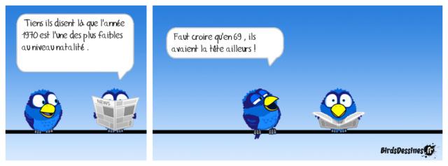 Les birds - Page 21 30594410