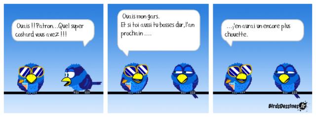 Les birds - Page 21 31732310