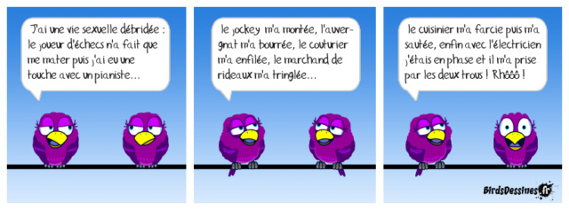Les birds - Page 22 32378410