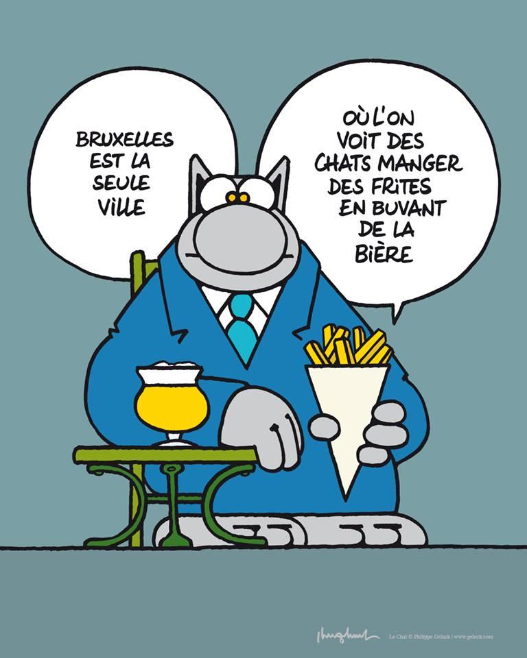 Le Chat - Page 4 33471810