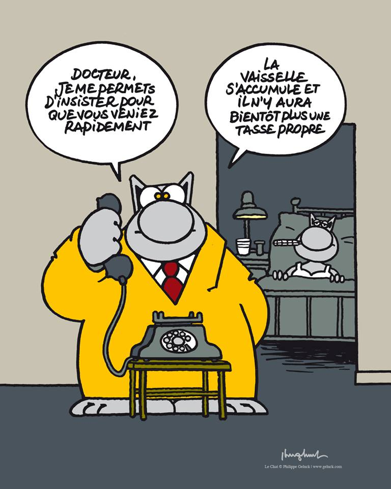 Le Chat - Page 4 33504510