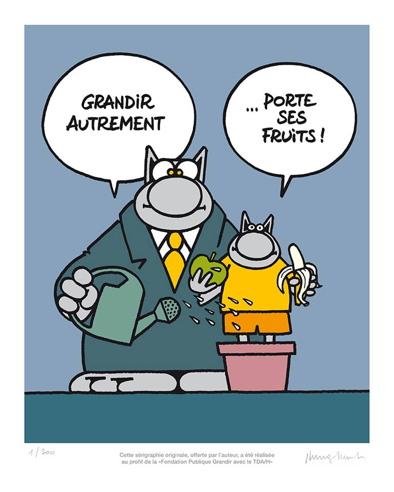 Le chat - Page 12 34492510