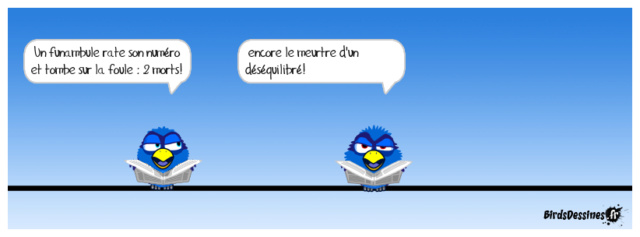 Les birds - Page 22 35050210