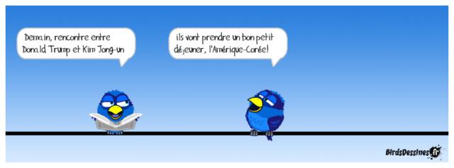 Les birds - Page 22 35147410