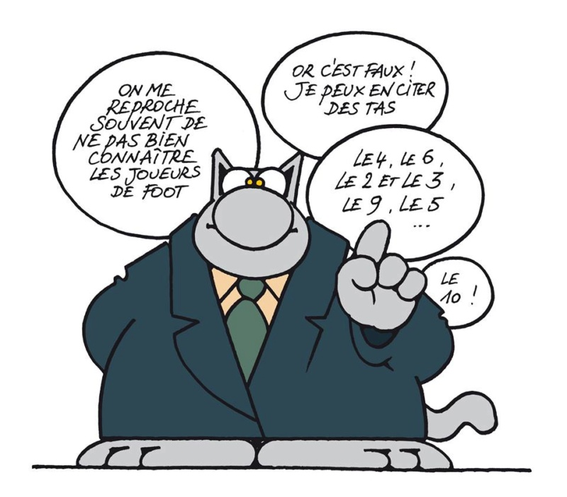 Le chat - Page 12 35298110