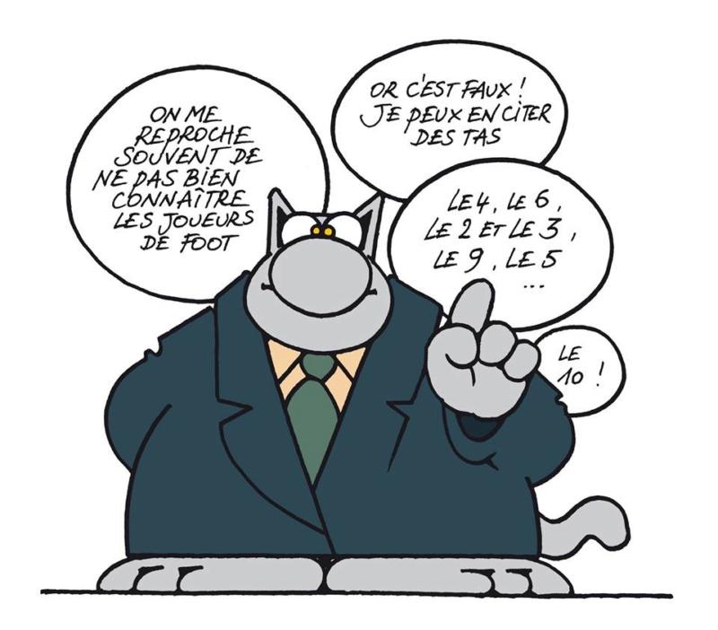 Le chat - Page 31 35298111