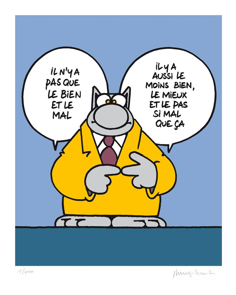 Le chat - Page 12 35303710