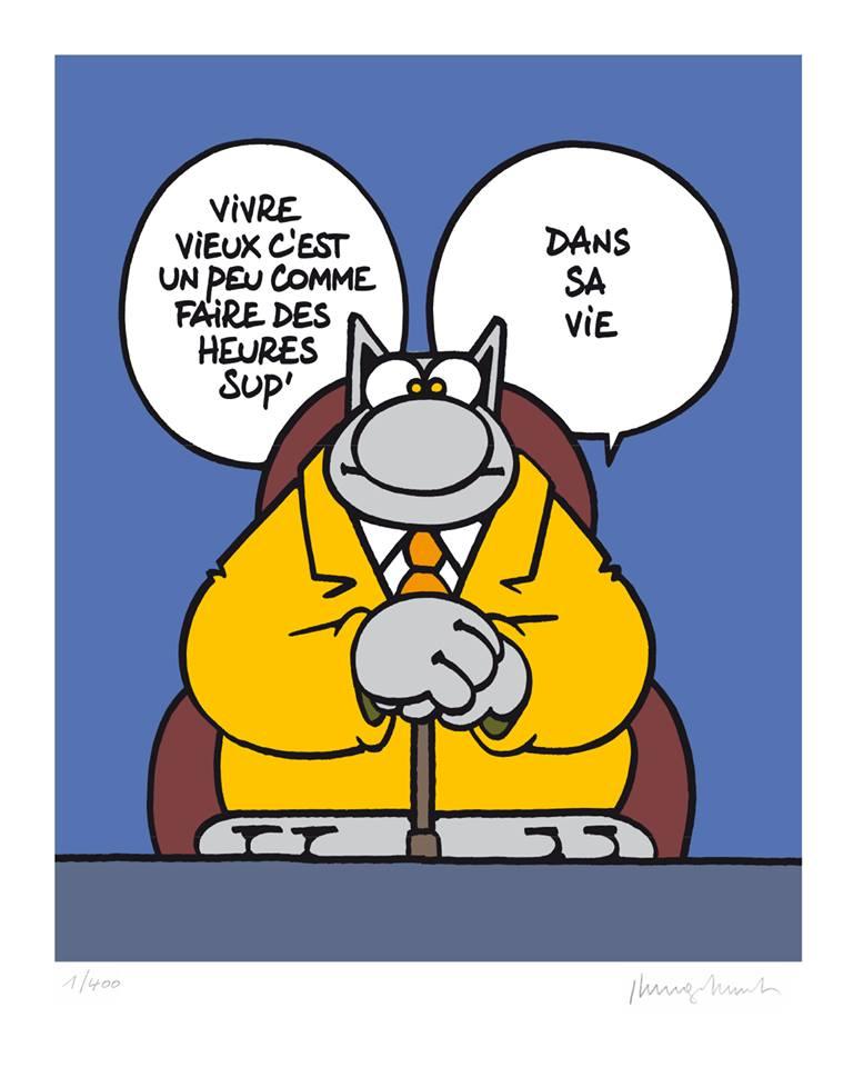 Le chat - Page 31 36296911