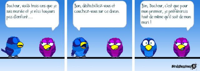 Les birds - Page 23 36453710