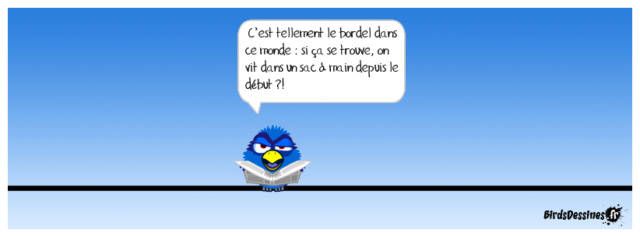 Les birds - Page 23 36477810