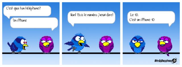 Les birds - Page 15 36478110