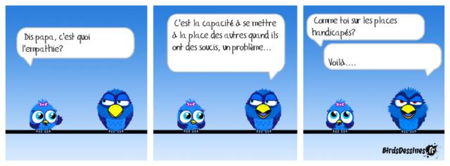 Les birds - Page 15 36505110