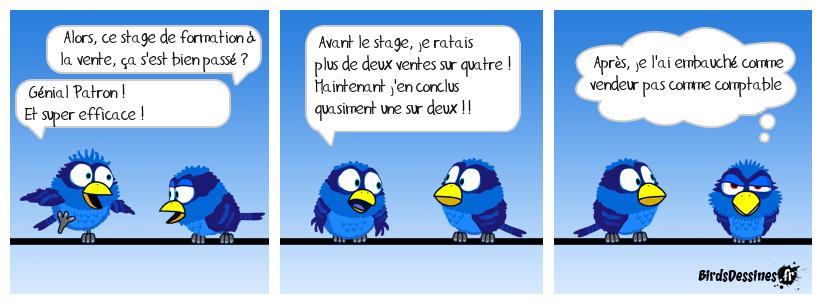 Les Birds - Page 10 36535010