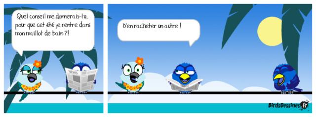 Les birds - Page 15 36707610