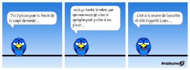 Les birds - Page 15 36946010