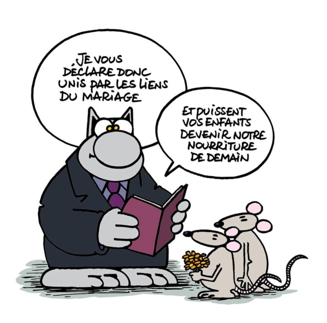 Le Chat - Page 6 37003510