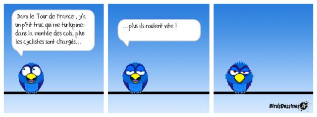 Les birds - Page 15 37641010