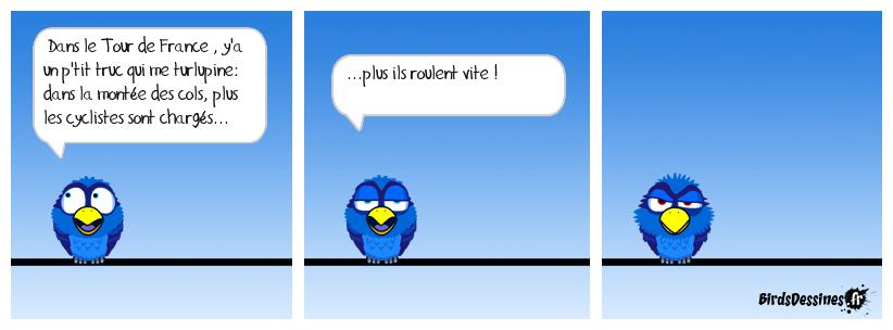 Les Birds - Page 10 37641011