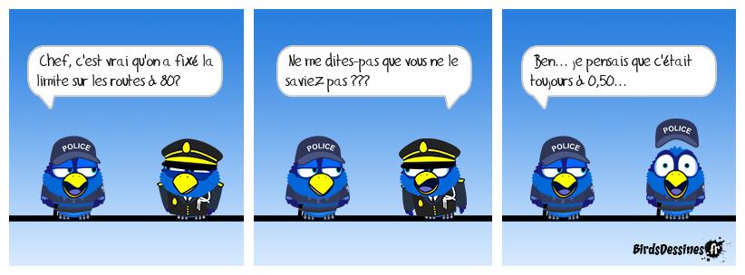 Les Birds - Page 10 37929811
