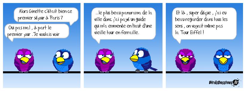 Les Birds - Page 10 38143410