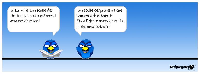 Les birds - Page 26 38465610