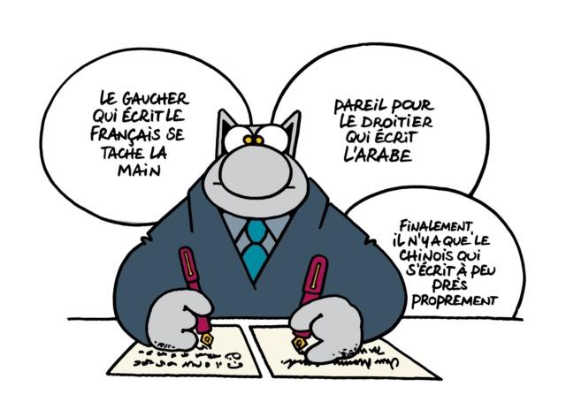 Le chat - Page 16 39036810